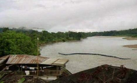 30m Snake in Borneo - Picture of 100ft-long 'snake' sparks fears of mythical monster in Borneo