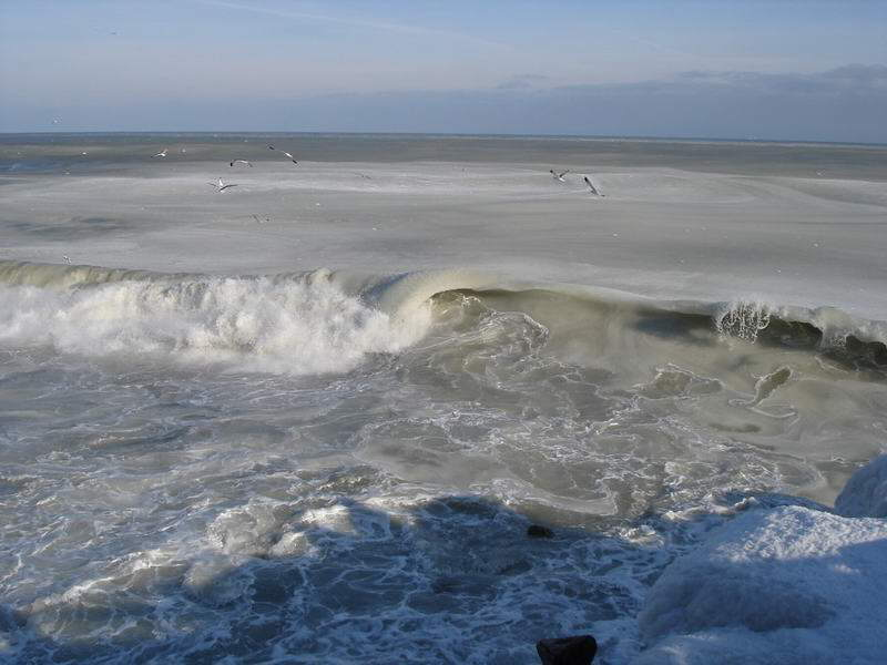 Have you ever seen a frozen sea?