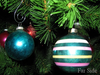 Ornaments on the tall tree