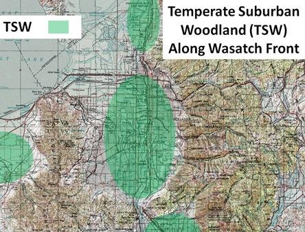 TSW Range Wasatch