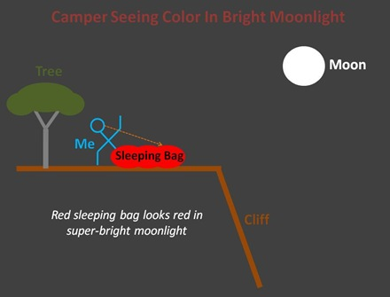 Camper Moonlight Color