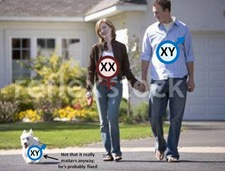 mammal XY