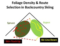 BC Ski Route Selection
