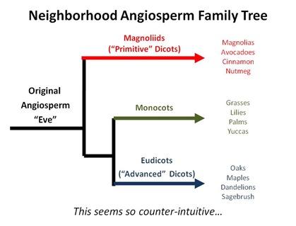 Hood Family Tree
