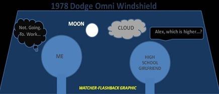 Omni Windshield