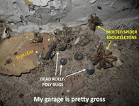Gross Garage