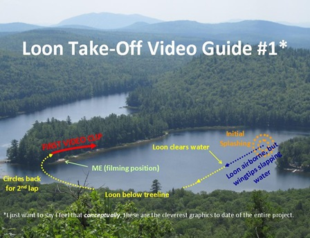 Loon Video Guide1