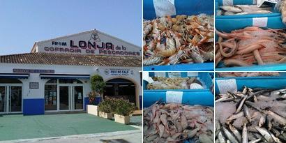 Ver Cofradía de Pescadores de CALPE
