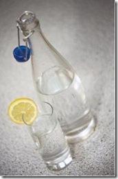 agua_saborizada