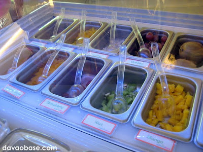 An array of toppings for your frozen yogurt at California Berry