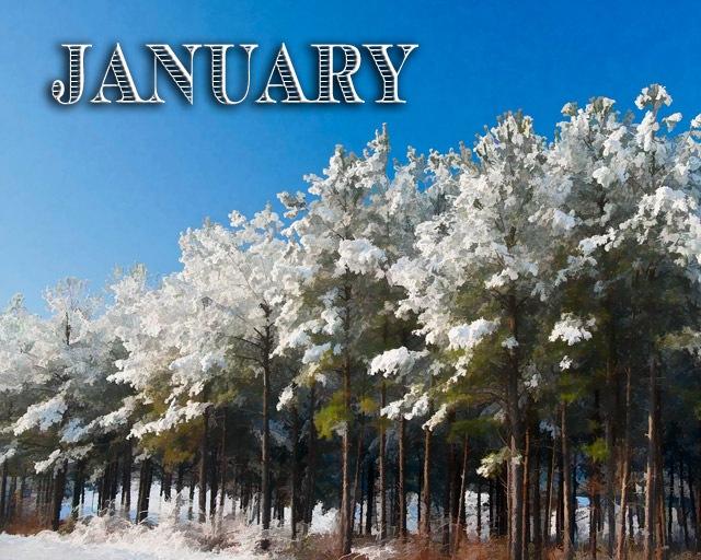 January-2011