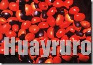 Huayruro