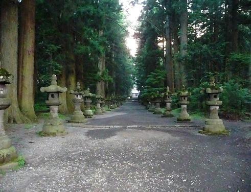 lanternas  de pedras cobertas de musgos alinhadas ao longo da entrada