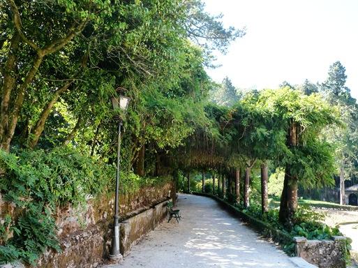25-  Palácio de Buçaco-jardim