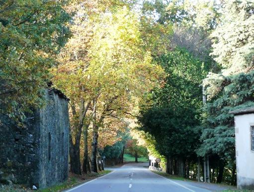 Fundão - estrada para Alpedrinha 1