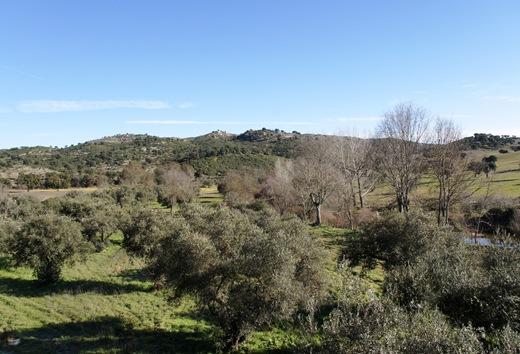 Idanha a Velha - paisagem ao redor da aldeia 1