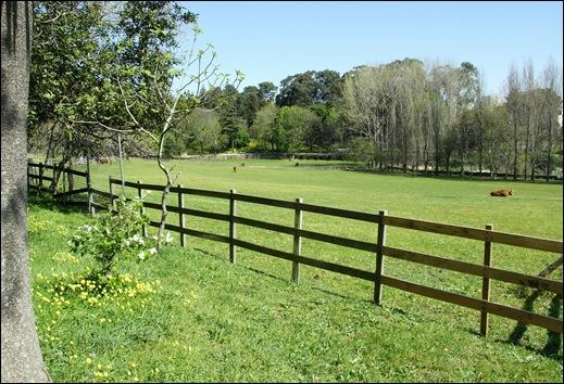 jardim serralves - fazenda