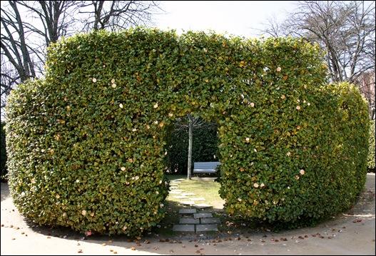jardim serralves  - parede de camélias.1