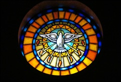 Sabugal - Glória Ishizaka - igreja de são joão - interior - vitral redondo