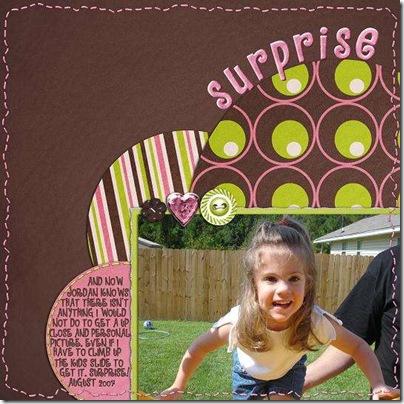 Surprise12x1220_1