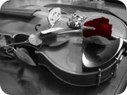 violin_500