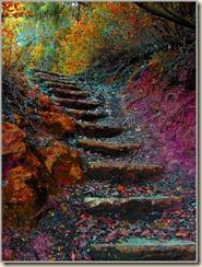 Escada-Sem-Corrimao_thumb[2]
