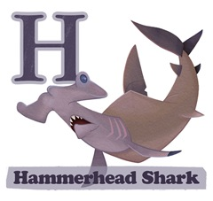 Hammerhead Shark Page Final