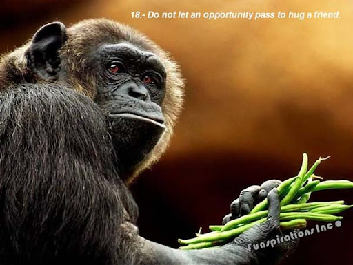 Do not let an opportunity pass to hug a friend.