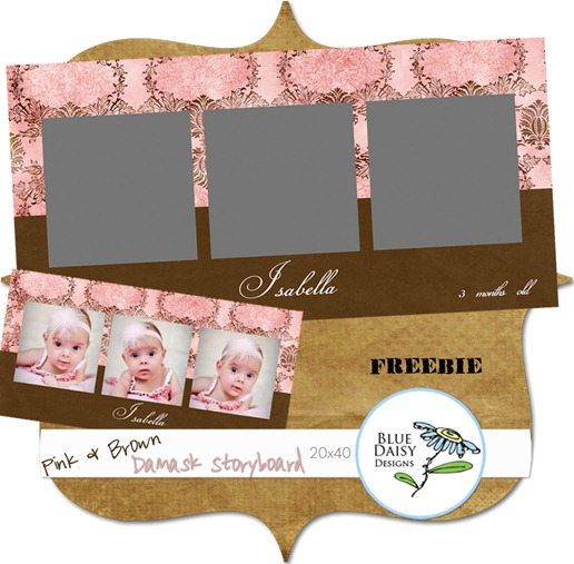 pink and brown damask storyboard packaging