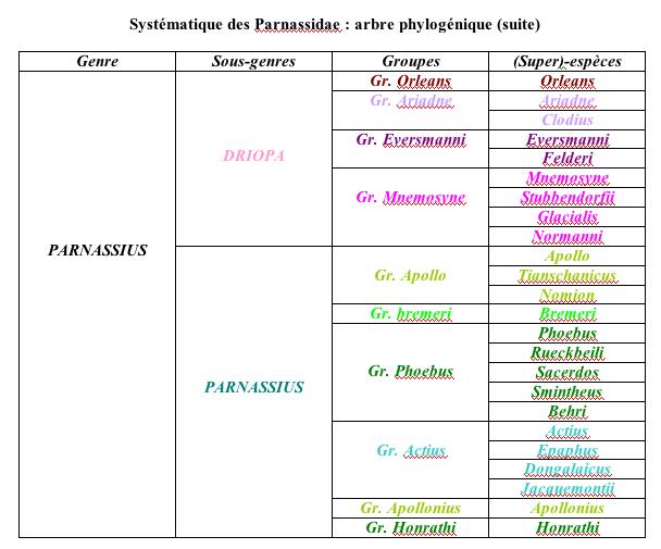 systematique_parnassidae2.jpg
