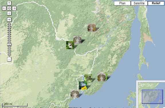 Localisation des photos : Petit Khingan (Chine), Birobidjan, Monts Boureinskij et Oussouri (Russie)