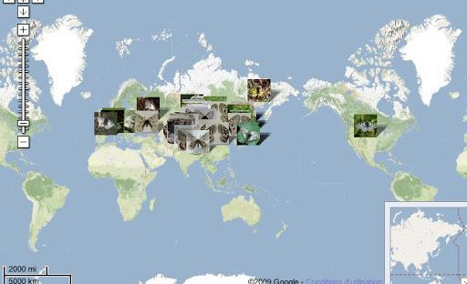 Localisation des photos dans les zones paléarctique et néarctique