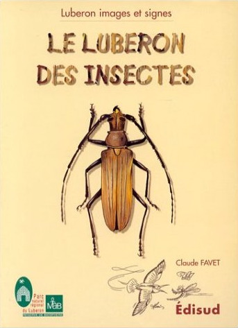 luberon_des_insectes.jpg