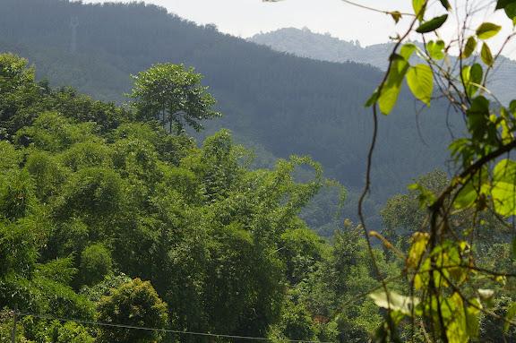 Vers la cascade de Mandian, Xichuangbanna (Yunnan), 25 août 2010. Photo : J.-M. Gayman