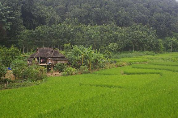 Maison thaï au sud de Mandian, Xichuangbanna (Yunnan), 25 août 2010. Photo : J.-M. Gayman