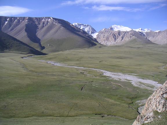 Kara Say : vue sur les Mts Borkoldoy (Koksaal Alatau), Kirghizstan, au matin du 11 juillet 2006. Sur ces pelouses alpines : nombreux Colias, P. machaon, etc. Photo : F. Michel