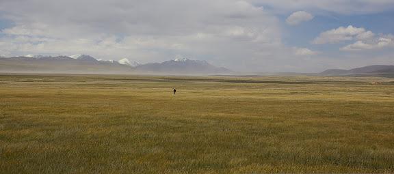 Sur le syrt de Kara Say : vue vers l'Est et le Terskey Alatau, 11 juillet 2006. Photo : J.-M. Gayman