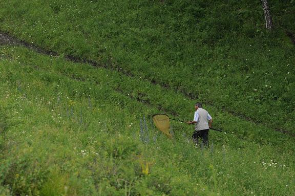 Dans la vallée d'Agades (Altaï du Nord), 3 juillet 2010. Photo : B. Lalanne-Cassou