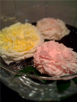 rosebolle
