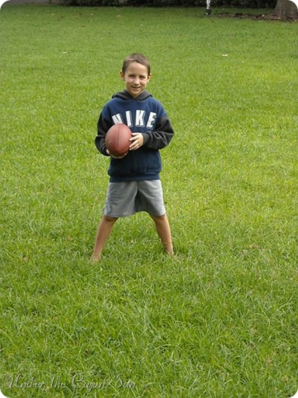 pictures 387-006