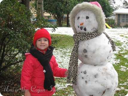 Dec Snow_11-139