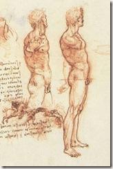 leonardo-da-vinci-study-man