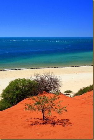 Red sand and sea - Francois Perron National Park - Western Australia - Australia