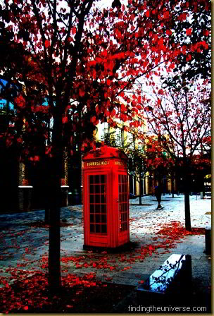 Phone box in London, Autumn