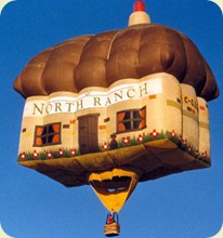 hot_air_balloon_16sfw