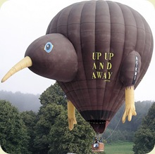 hot_air_balloon_35sfw