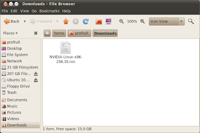 папка Downloads