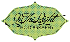 in the light photography logo 4