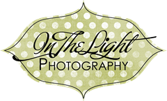 in the light photography logo 2