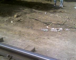 (с) Евгений Соловьев. След грейдера 05412 ТМ, пересекшего рельсы Детской железной дороги рядом с переездом. Фото с мобильного.